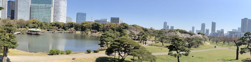 Paysage_Japon_Tokyo02.jpg